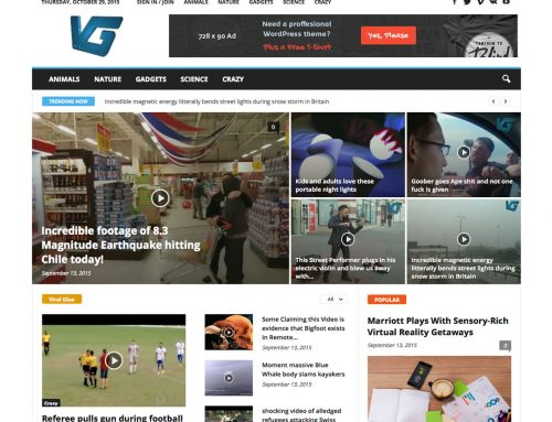 Viralglue: WordPress Theme Installation